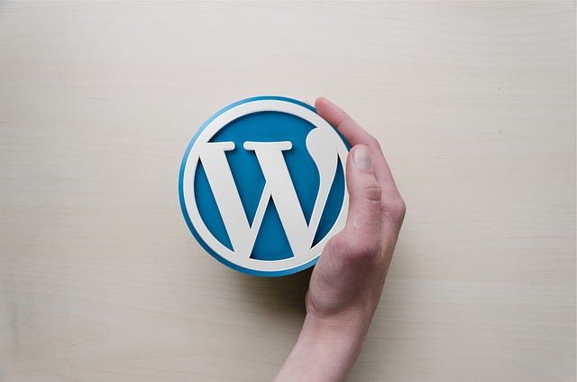 Wordpress image with hand